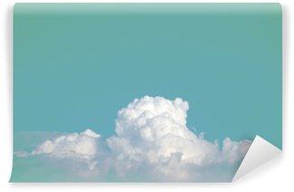 Vinil Duvar Resmi Arka plan kullanımı için degrade pastel bağbozumu renk ile soyut yumuşak gök bulut