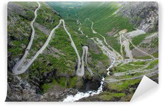 Vinil Duvar Resmi Dağ yolu Trollstigen, Norveç View