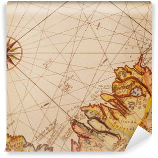 Vinil Duvar Resmi Eski harita detay
