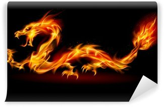 Vinil Duvar Resmi Fire Dragon