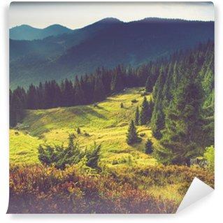Vinil Duvar Resmi Güneş de güzel yaz dağ manzara.