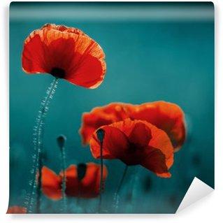 Vinil Duvar Resmi İnanılmaz haşhaş alanı. Yaz çiçekleri.