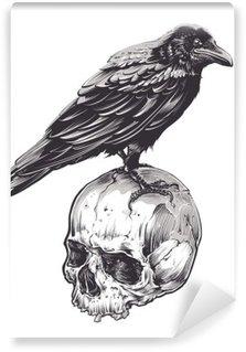 Vinil Duvar Resmi Kafatası üzerinde karga