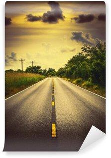 Vinil Duvar Resmi Louisiana karayolu 82 bir araba ve bulutlar kırsal roadscape