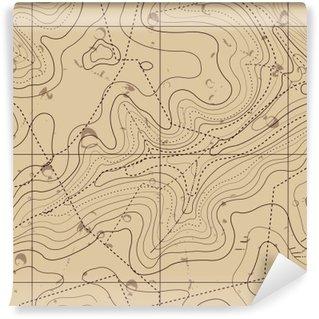 Vinil Duvar Resmi Özet Retro Topoğrafya haritası Arkaplan
