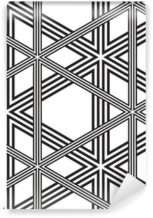 Vinil Duvar Resmi Siyah ve beyaz Vector Dikişsiz Desen Arka Plan Hatları Sadece.