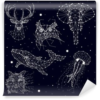Vinil Duvar Resmi Takımyıldızı, fil, baykuş, geyik, balinalar, denizanası, tilki, yıldız, vektör grafikleri kümesi