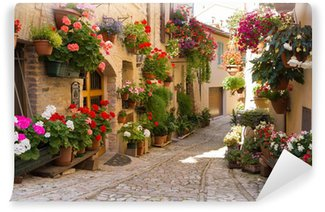 Vinil Duvar Resmi Vicolo con fiori, Spello