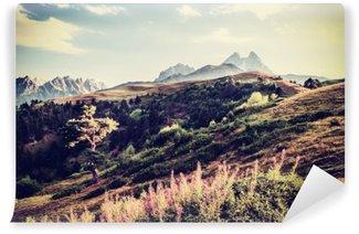 Vinil Duvar Resmi Vintage Vadisi ve Dağları