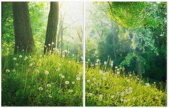Dyptyk Charakter wiosny. piękny krajobraz. zielona trawa i drzew