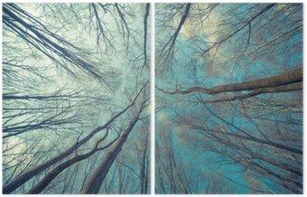 Dyptyk Drzewa Web Tło