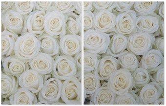 Dyptyk Grupa białych róż po natryskiem