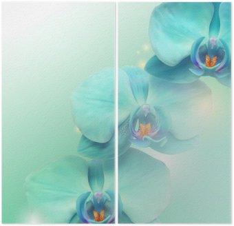 Dyptyk Kwiat orchidei w tle