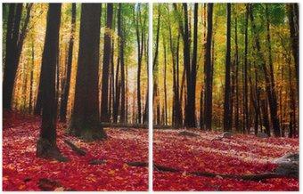 Dyptyk Las jesienią z złote światło