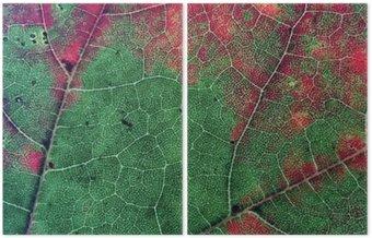 Dyptyk Liście w jesiennym sezonie kolorów