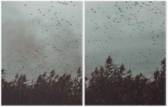 Dyptyk Pęczek ptaki latające blisko trzciny w ciemnym sky- stylu vintage black and white