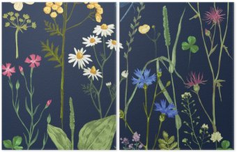 Dyptyk Ręcznie rysowane zestaw z ziół i kwiatów