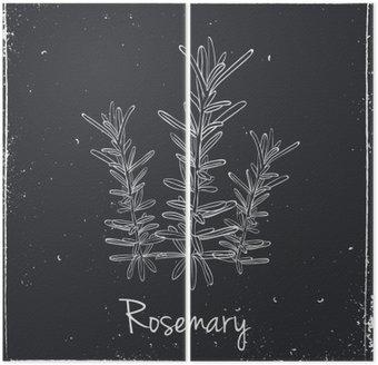 Dyptyk Rosemary ziół i przypraw.