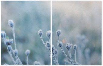 Dyptyk Streszczenie naturalne z zamrożonych roślin lub pokryte szronem rym