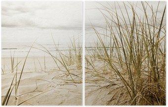 Dyptyk Zamknąć z wysokiej trawy na plaży podczas pochmurnego sezonie