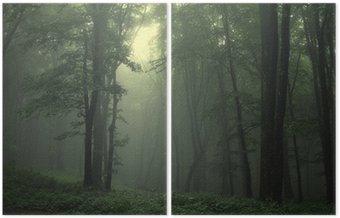 Dyptyk Zielony las po deszczu