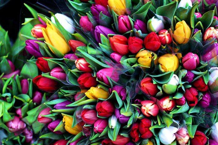 Obraz na Płótnie Flowers35 - Przeznaczenia