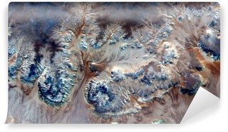 Vinyl Fotobehang Allegorie onderwater bloemen, planten Stone fantasie, abstract naturalisme, abstracte fotografie woestijnen van Afrika uit de lucht, abstracte surrealisme, luchtspiegeling, fantasie vormen in de woestijn, planten, bloemen, bladeren,