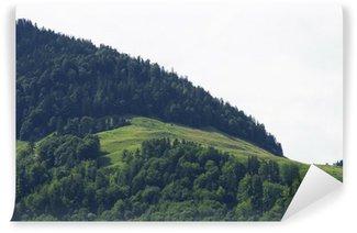 Vinyl Fotobehang Alp