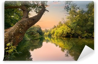 Vinyl Fotobehang Avond op de rivier