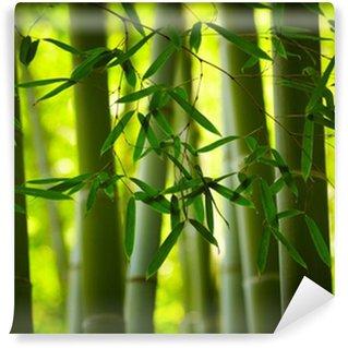Vinyl Fotobehang Bamboe bos achtergrond