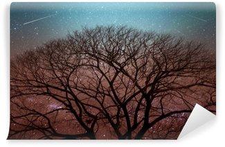 Vinyl Fotobehang Boom onder een sterrenhemel