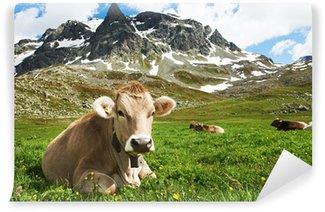 Vinyl Fotobehang Bruine koe op groen gras weide