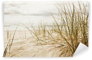 Vinyl Fotobehang Close-up van een hoog gras op een strand tijdens bewolkte seizoen