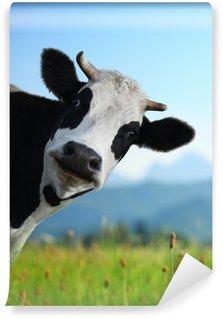 Vinyl Fotobehang Cow
