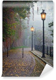 Vinyl Fotobehang De mysterieuze steegje in mistige herfst tijd met verlichte lampen