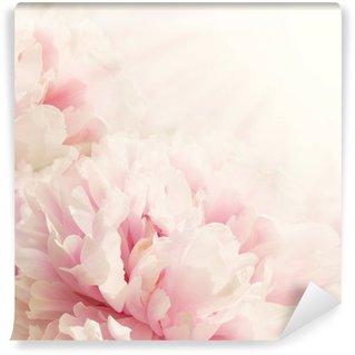 Vinyl Fotobehang Defocus Close-up van pioenroos bloem