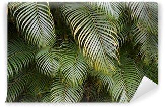Vinyl Fotobehang Donkere tropische jungle Palm Frond Achtergrond