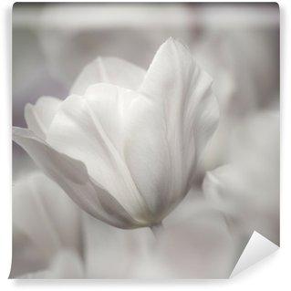 Vinyl Fotobehang Fijne kunst van het close-up Tulpen, vaag en scherpe