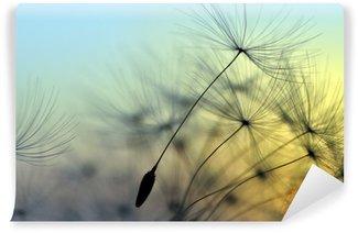 Vinyl Fotobehang Gouden zonsondergang en paardebloem, meditatieve zen achtergrond
