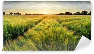 Vinyl Fotobehang Landelijk landschap met tarwe veld op zonsondergang