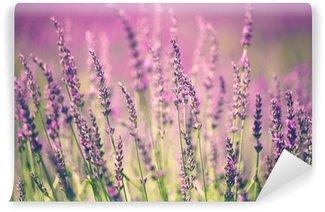 Vinyl Fotobehang Lavendel bloem