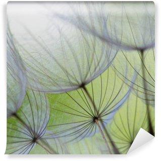 Vinyl Fotobehang Paardebloem zaad