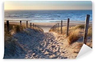 Vinyl Fotobehang Pad naar Noordzee strand in gouden zon