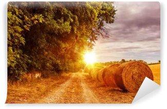 Vinyl Fotobehang Platteland Summer Road