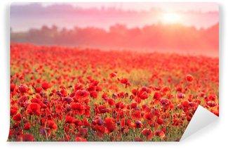 Vinyl Fotobehang Rode papaver veld in ochtendmist