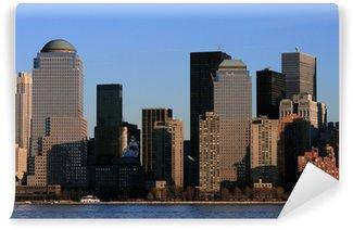 Vinyl Fotobehang Skyline Newyork in Afternoon