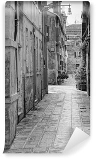 Vinyl Fotobehang Smal steegje in Venetië, Italië