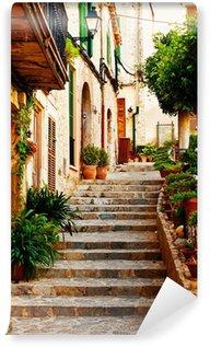 Vinyl Fotobehang Straat in Valldemossa dorp in Mallorca