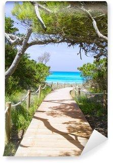 Vinyl Fotobehang Strand weg naar Illetas paradise beach Formentera