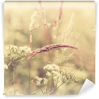 Vinyl Fotobehang Summer Meadow